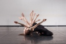 dance productions